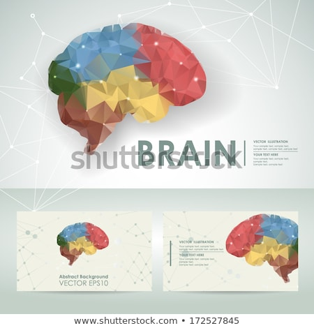 thinking process and brain icon colorful card stock photo © robuart