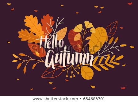 abstract autumn leaves banner design stock photo © ivaleksa