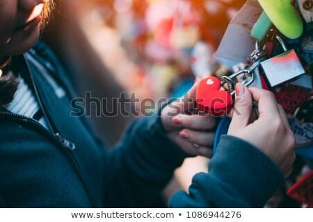 Stock fotó: Szeretet · kilátás · fa · fekete · erdő · Németország