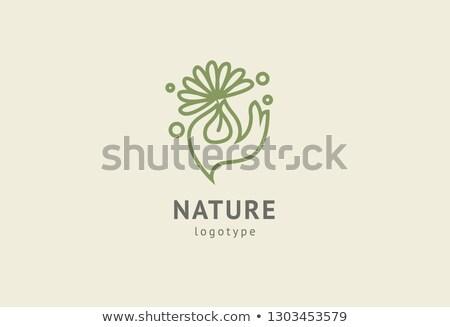 eco green leaf man logo yoga sign Stock photo © blaskorizov
