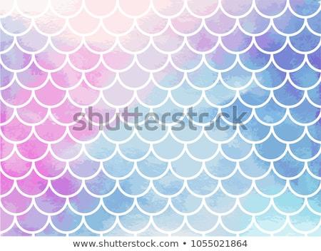 русалка иллюстрация шаблон рыбы пузырьки оболочки Сток-фото © colematt