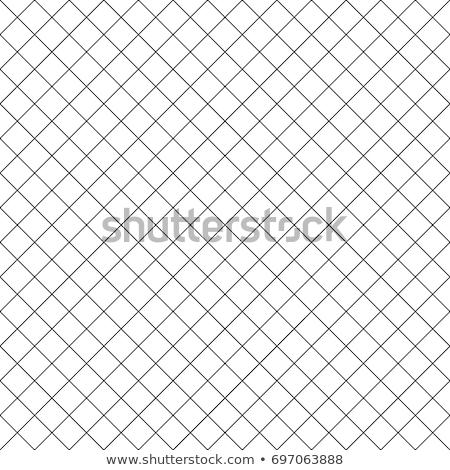 rabitz grid seamless pattern stock photo © biv