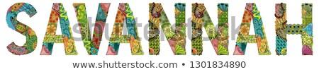 Vrouwelijke naam savanne vector decoratief object Stockfoto © Natalia_1947