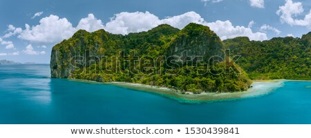 A deserted island scene Stock photo © bluering
