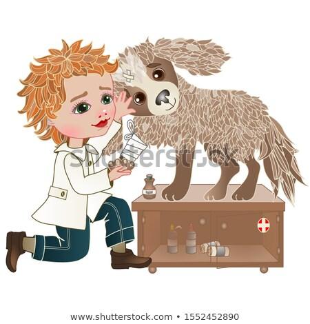 Animales vaca establecer nino lesión expreso Foto stock © toyotoyo
