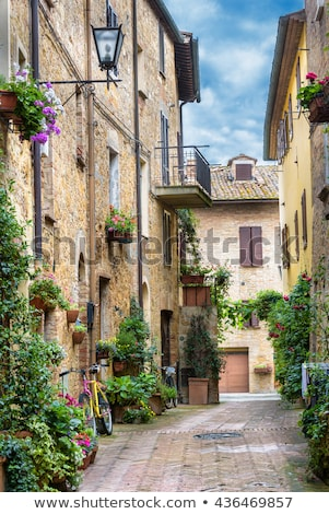 street in pienza italy stock photo © borisb17