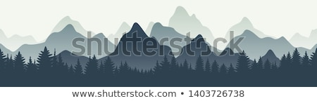 vector coniferous trees and mountain silhouettes stock photo © freesoulproduction
