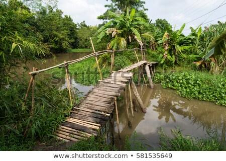 old wooden bridge and wooden boat in vietnam stock photo © galitskaya