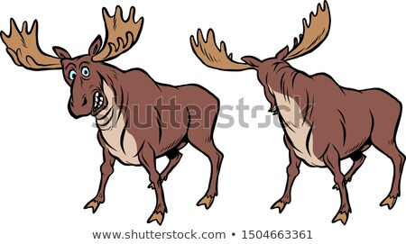 Divertente Moose fumetto cartoon pop art retro Foto d'archivio © rogistok