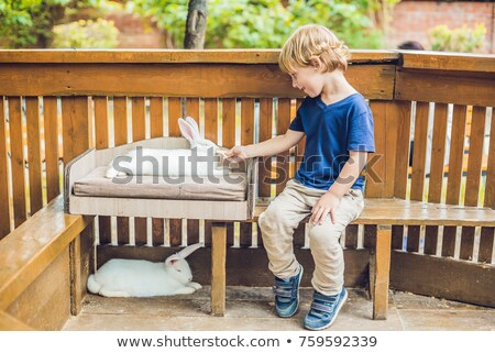 toddler boy feeds rabbit in the petting zoo. concept of sustainability, love of nature, respect for  Stock photo © galitskaya
