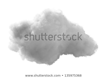 ecology on white background. Isolated 3d illustration Stock photo © ISerg