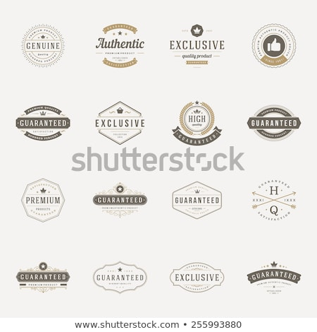 Guaranteed Logotype of Premium Product Vector Stock photo © robuart
