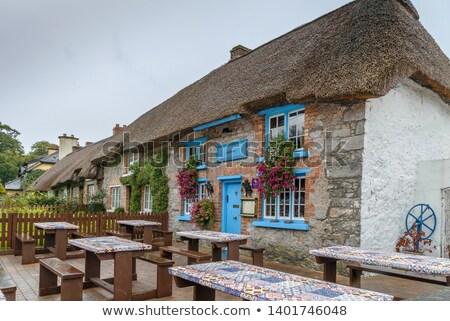 İrlanda saman çatı ev yeşil mavi Stok fotoğraf © borisb17