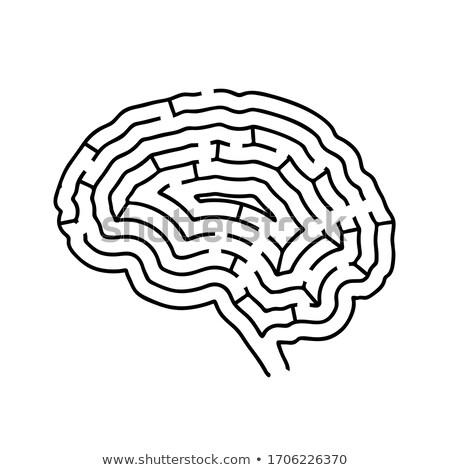 Mózgu skomplikowany labirynt czarny sylwetka Zdjęcia stock © evgeny89