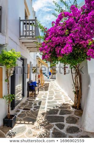Pittoreske stad straat eiland Griekenland smal Stockfoto © dmitry_rukhlenko