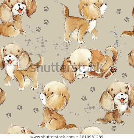 Cute labrador dog stock photo © iko