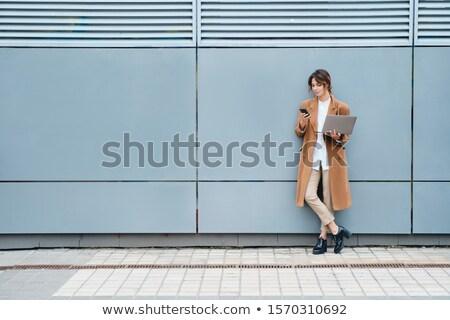 glimlachend · zakenvrouw · student · laptop · onderwijs · business - stockfoto © pressmaster