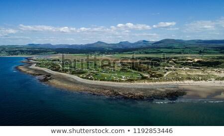 concha · ilha · norte · país · de · gales · belo · praia - foto stock © pixelmemoirs