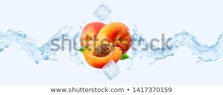 ice · cube · isolado · branco · luz · fruto - foto stock © Givaga