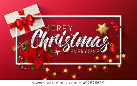 karácsony · díszek · vektor · szett · virágzik · terv - stock fotó © archymeder