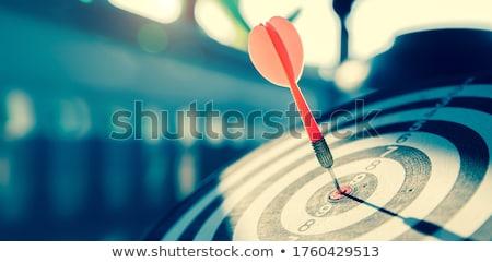 Financieros objetivo dinero financiar gráfico tabla Foto stock © 4designersart