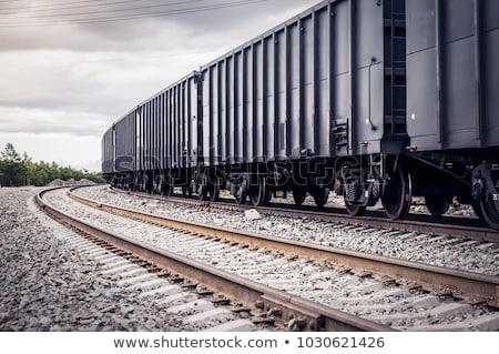 Railway station with freight train and rails Stock photo © ABBPhoto
