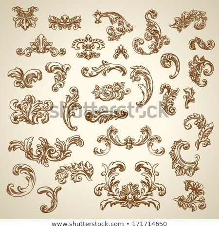 Floral Scroll Set Stock photo © kittasgraphics