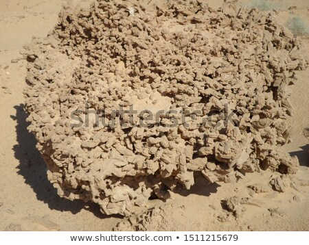 Aumentó sáhara mineral especial resumen desierto Foto stock © jonnysek