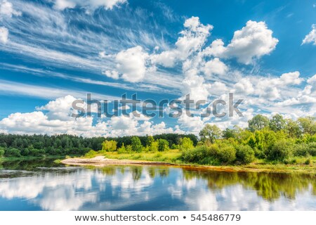 The river on a sunny day stock photo © azjoma