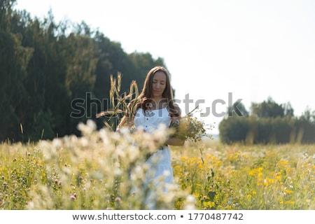 ストックフォト: 肖像 · 幸せ · 美少女 · 長い · 光 · 茶色の髪