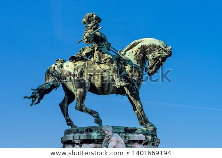 the statue of prince eugene of savoy in front of buda castle stock photo © pixachi