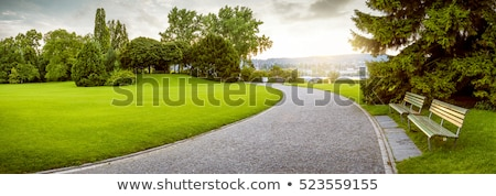 Bench on sky background. Tranquil scene.