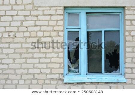 öreg · ház · tavasz · fal · festék · fekete - stock fotó © bsani