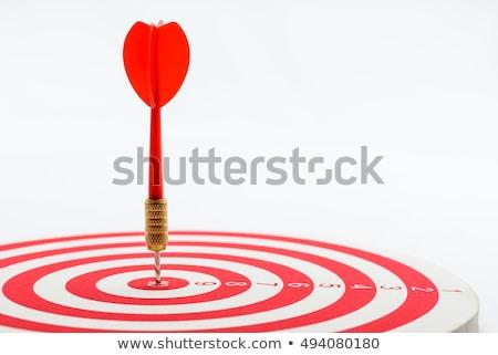 Practice - Arrows Hit in Red Target. Stock photo © tashatuvango