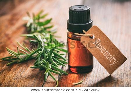 rosemary essential oil stock photo © marimorena