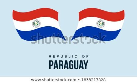 Pokaż banderą przycisk republika Paragwaj wektora Zdjęcia stock © Istanbul2009