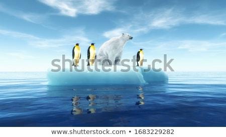 Ijsbeer 3d render permanente ijsberg dag water Stockfoto © Elenarts