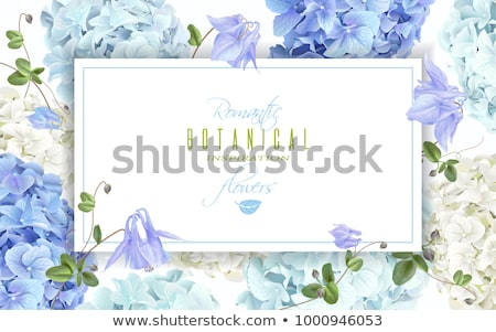 Stock photo Wedding invitation elegant floral horizontal