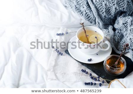 Rahatlatıcı kahvaltı yatak zaman okumak kahve Stok fotoğraf © ozgur