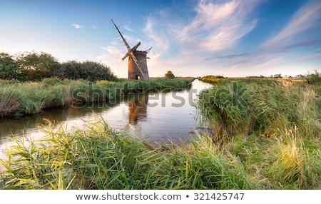 Moinho norfolk água paisagem rio branco Foto stock © chris2766