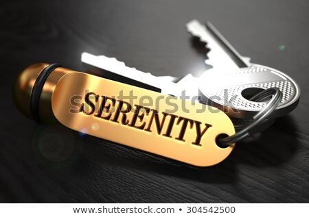 Keys with Word Serenity on Golden Label. Stock photo © tashatuvango