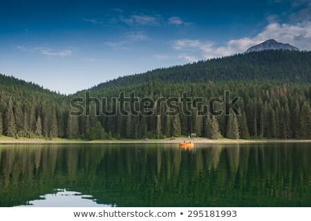 Черногория · небе · трава · лес · снега · лет - Сток-фото © master1305