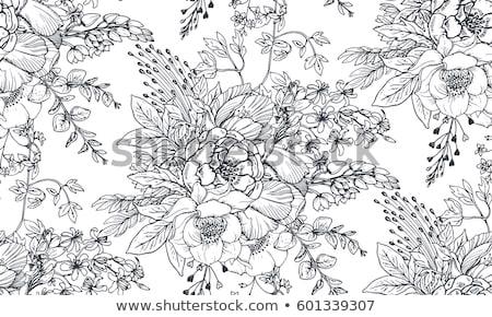 vector · monocromo · floral · dibujado · a · mano · ornamento · flores - foto stock © lissantee
