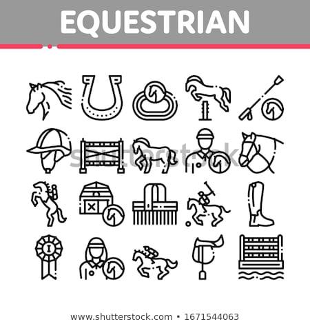 Equestrian Icon Stock photo © patrimonio