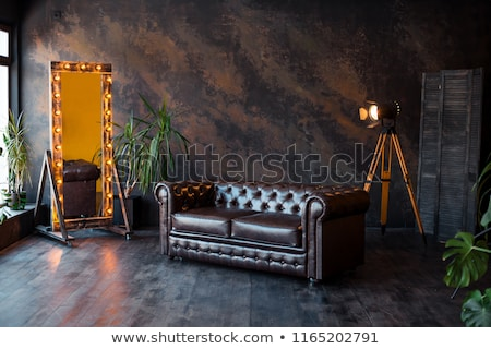 brown leather sofa armchair classic style stock photo © lunamarina