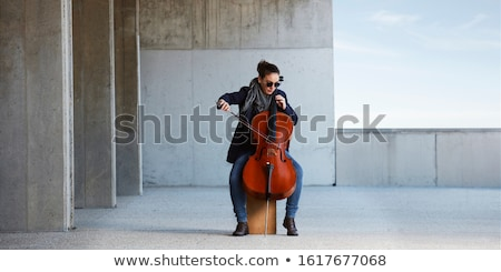 Beautiful girl with cello Stock photo © svetography