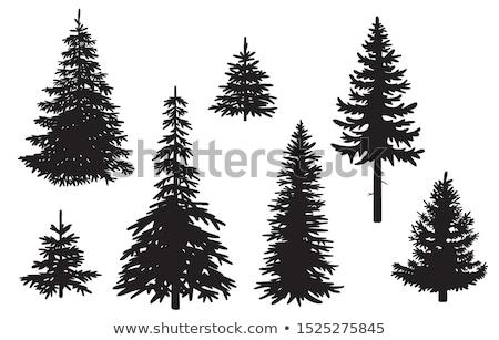 Wystroić sylwetka zielone zestaw biały drzewo Zdjęcia stock © romvo