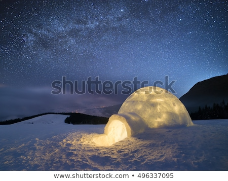 Snow igloo at night Stock photo © Kotenko
