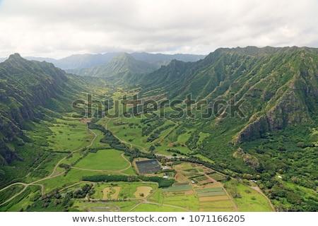 Vadi Hawaii inekler dağ Stok fotoğraf © kraskoff