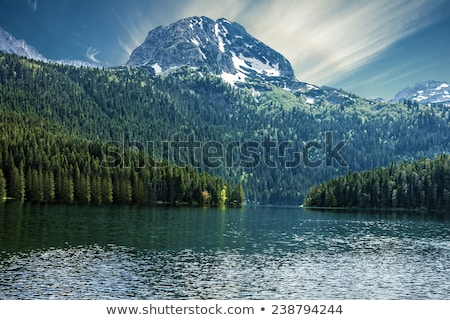 Black Lake shore, national park Durmitor, Montenegro Stock photo © Steffus